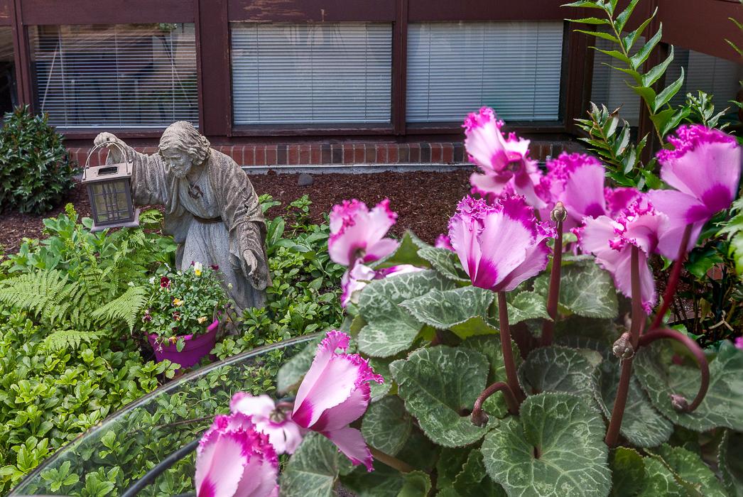 Courtyard Jesus